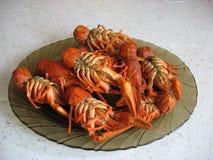 сrawfish Royalty Free Stock Photo