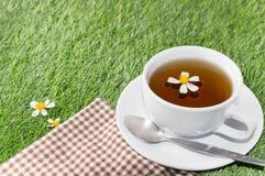 Сup чая стоцвета Стоковое Изображение RF