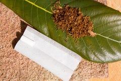 Табак для курить на листе Стоковая Фотография RF