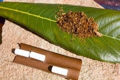 Табак для курить на листе Стоковые Изображения RF