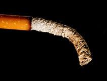 табак Стоковая Фотография