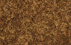 табак Стоковые Фотографии RF