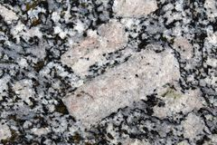 Таблитчатые кристаллы k-фельдшпата в ghiandone гранита трясут стоковые фотографии rf