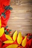 Таблица была украшена с листьями и ягодами осени Осень крупный план предпосылки осени красит красный цвет листьев плюща померанцо Стоковое фото RF