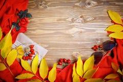 Таблица была украшена с листьями и ягодами осени Осень крупный план предпосылки осени красит красный цвет листьев плюща померанцо Стоковое Изображение
