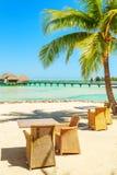 Таблица и стулья под тропической пальмой на белом песчаном пляже, Стоковое Изображение