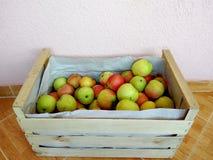 таблица коробки яблок зеленая деревянная Стоковые Фото