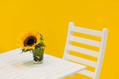 таблица солнцецвета Стоковое Изображение