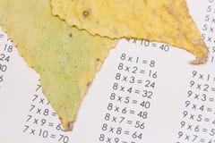 таблица умножения Стоковые Фото