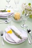 таблица установок daffodil стоковые изображения rf