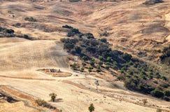 Табун овец на испанских холмах Стоковое Изображение