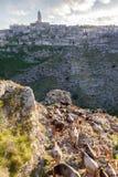 Табун с взглядом деревни Стоковые Фото