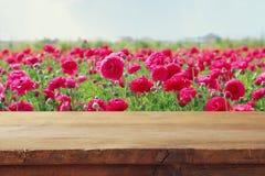 таблица деревянной доски перед полем цветков лета Стоковое Изображение RF