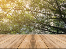 Таблица деревянной доски пустая перед запачканной предпосылкой Таблица перспективы коричневая деревянная над деревьями нерезкости Стоковая Фотография RF