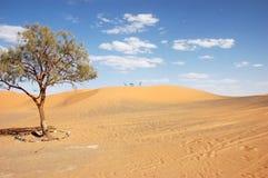 Таблица и стулы ковки чугуна на верхней части песчанной дюны Стоковые Изображения RF