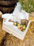 таблица коробки яблок зеленая деревянная Стоковое Изображение