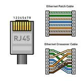 Таблица расцветки Pinout соединителя локальных сетей Прямо и кроссовер RJ45 соединитесь вектор бесплатная иллюстрация