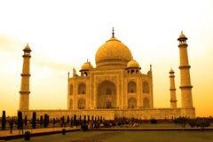 Тадж-Махал в золотом оттенке, Агра, Уттар-Прадеш, Индия Стоковое Изображение RF