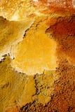 Тазик гейзера большого пальца руки Стоковые Фотографии RF