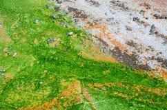 Таз гейзера Norris на национальном парке Йеллоустона Стоковые Фотографии RF