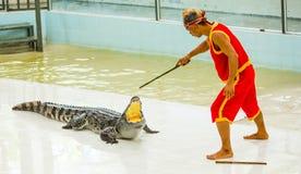ТАИЛАНД, ПХУКЕТ - 11-ОЕ ДЕКАБРЯ 2014: Традиционный для Таиланда Стоковые Фотографии RF