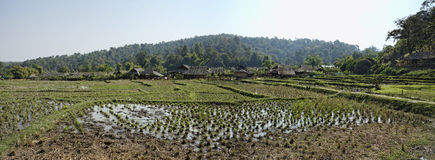 Таиланд, Mai Chiang, село шеи Карен длиннее стоковая фотография rf