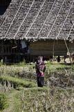 Таиланд, Mai Chiang, схват Luang Baan, вилла Карен Стоковые Фотографии RF