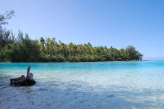 Таити стоковая фотография