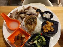 Тайваньский рис свинины стоковая фотография