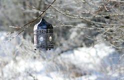 Тайна зимы стоковая фотография