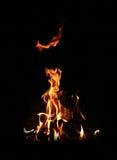 тайна пожара Стоковые Фотографии RF