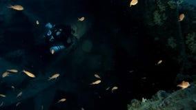 Тайна хляби, в глубоком голубом море видеоматериал