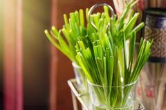 Тайская группа весны лука в стекле для еды тайской еды Стоковая Фотография