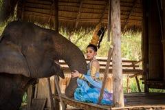 Тайская девушка с слоном стоковая фотография rf