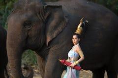 Тайская девушка с слоном стоковое фото