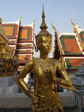 Тайская золотистая статуя Стоковые Изображения