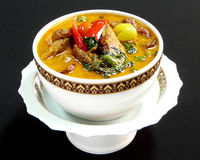 Тайская кухня, красное карри с уткой жаркого Стоковое Фото