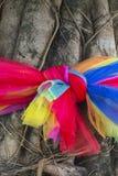 Тайская связь ткани цвета стиля 3 с деревом, для тайского верит Стоковое Фото