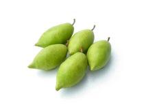 Тайская слива борова плодоовощ Стоковые Фотографии RF