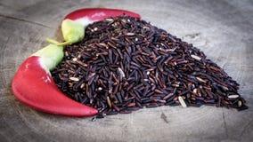 Тайская ягода риса Стоковая Фотография