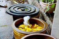 Тайские женщины связывают батик крася желтый естественный цвет сделанный от turme Стоковая Фотография RF