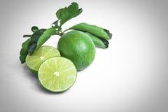 Тайские листья лимона и зеленого цвета Стоковое Изображение