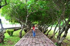 Тайские представлять и стойка женщины на поле с Plumeria или Templetree Стоковые Фото