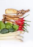 Тайские травы супа батата Tom Стоковые Изображения RF