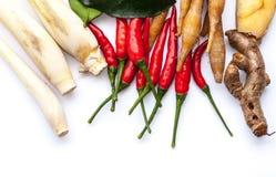 Тайские травы супа батата Tom Стоковые Фото