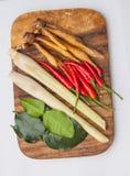 Тайские травы супа батата Tom Стоковые Фотографии RF