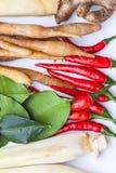 Тайские травы супа батата Tom Стоковое Изображение RF