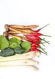 Тайские травы супа батата Tom Стоковая Фотография