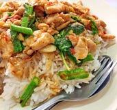 Тайские stir-зажаренные цыпленок и базилик стоковое изображение