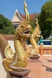 Тайский золотистый дракон защищает вход к виску Стоковые Изображения RF